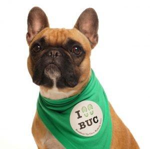 Belasco, the BUC Mascot